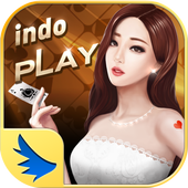 IndoPlay All in One